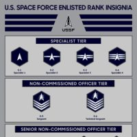 space force insignia
